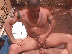Muscled tattooed bull is jumping on his hairy lover`s dong.